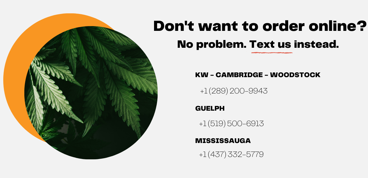 weed delivery same day mississauga ontario